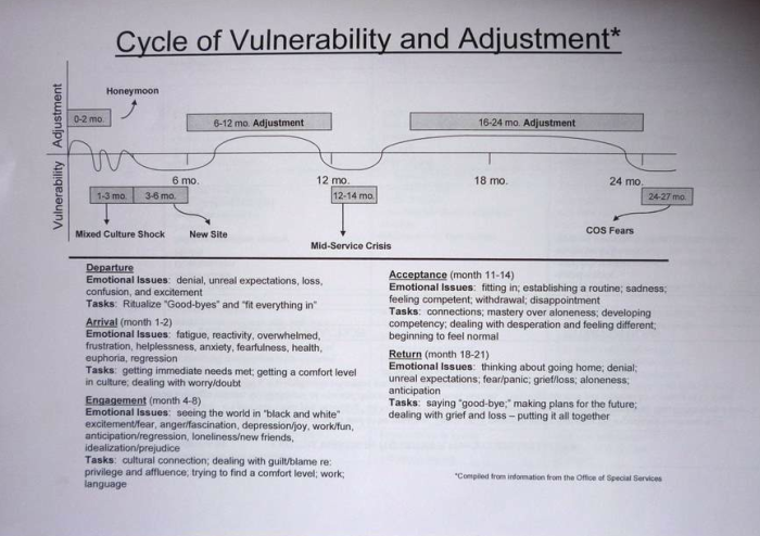 cycle-of-vulnerability-and-adjustment